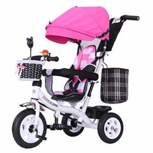 HBSC Tricycle pour Enfants, Siège et Putter réglables, Repose-Pieds Rabattable, Auvent à Protection UV, Roue en Caoutchouc amortissant, Adapté pour 1 à 6 Ans 1bicycle Cadeau I