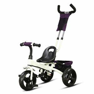 HBSC Tricycles pour Enfants, Cadre Robuste en Acier au Carbone, Tige de poussée réglable et démontable, Siège et Guidon réglables, 2-6 Ans 1bicycle Cadeau White