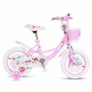 SONG Tricycle bébé évolutif 2-3-6 Ans De Vélos Landau Portable Enfant Cadeaux Vélo for Les Garçons Et Les Filles 2 Choix (Color : Pink, Size : 12 inches)