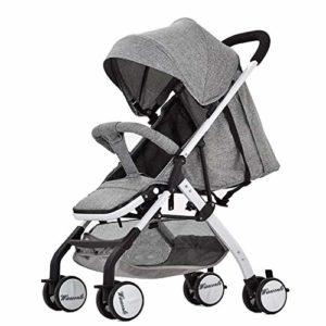 GYPPG Poussette pour bébé Simple, Landau de Voyage léger avec Grand auvent pour bébé, Enfant en Bas âge, bébés garçons et Filles, 6 Mois et Plus, Gris
