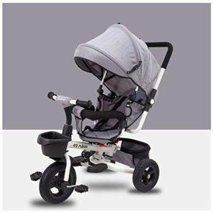 WWSC Poussette Tricycle à Trois Roues pour bébé, Le Cadre Peut être plié, Le bébé Peut être à Plat, auvent Anti-UV, Confortable et Durable, adapté aux bébés de 1 à 6 Ans-Maison Sûre Grey